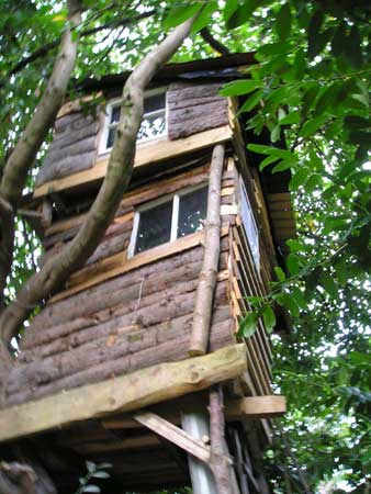 Tree_house